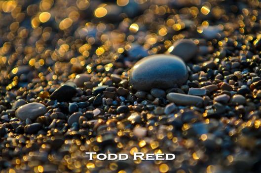 """Lake Michigan Treasure"" — Todd Reed  Summit Park south of Ludington is one of my favorite West Michigan places to rock hunt along the Lake Michigan shoreline. After enjoying a fabulous fish dinner at the famous Bortell's Fisheries just across the road on South Lakeshore Drive, I find some rock treasure on the park beach. F2.8 at 1/200, ISO 100, 80-200mm lens at 200mm"