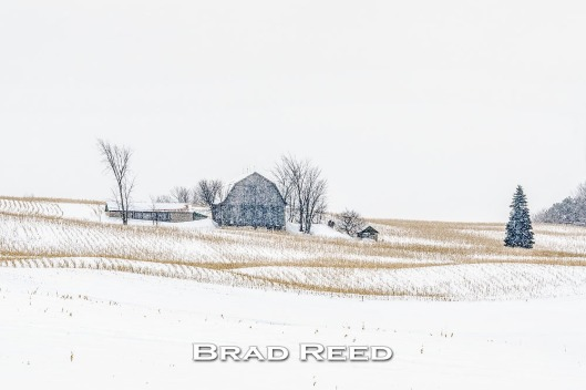 47B_Brad Reed_2255_February 5_2014_Barn between Traverse City and Sleeping Bear_facebook