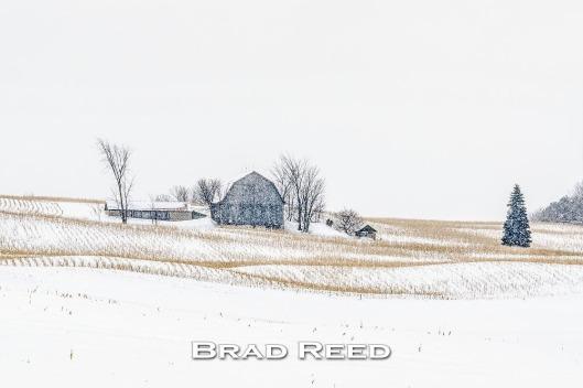 47B_Brad Reed_2255_February 5_2014_Barn between Traverse City and Sleeping Bear_facebook